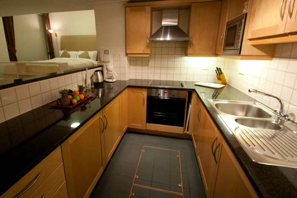 Large Studio Apartment - Kitchen