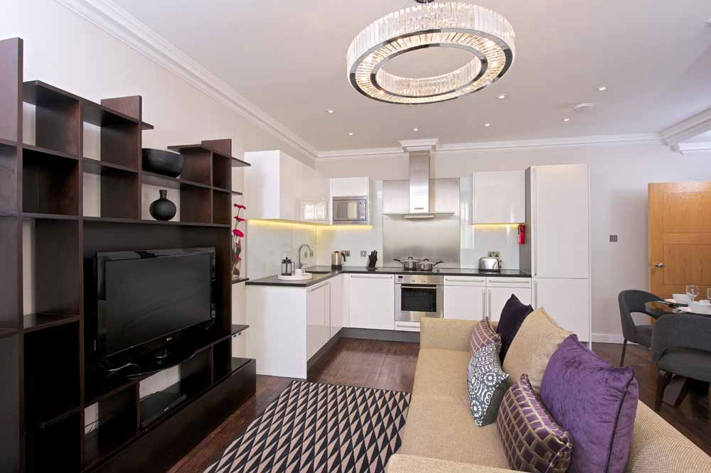 Deluxe One Bedroom Apartment - Living Area and Kitchen