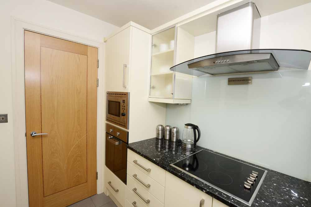 Large Studio Apartment - Kitchenette
