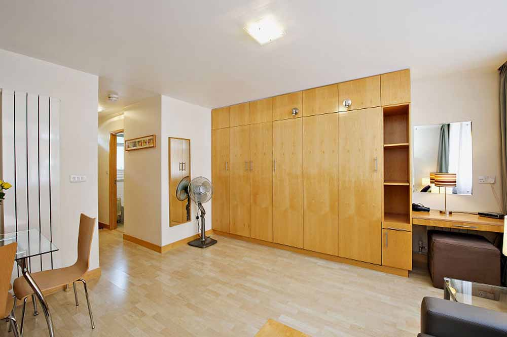 Premium Studio Apartment - Living Area
