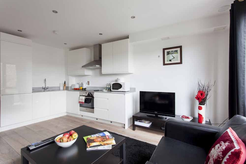 One Bedroom Apartment - Kitchen and Living Area