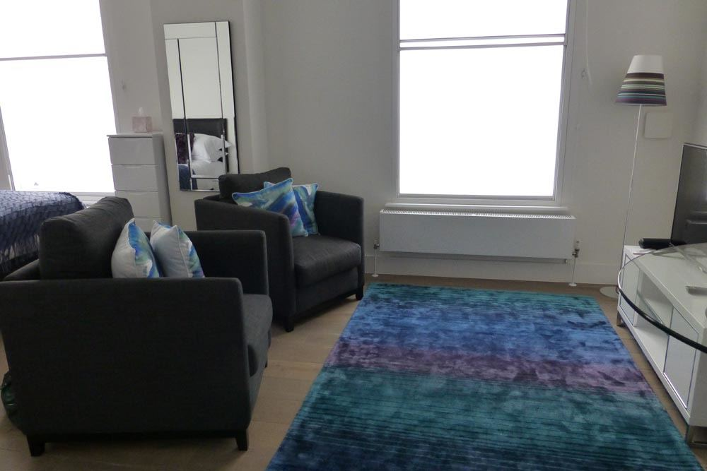 Studio Apartment - Living Area